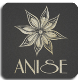 Anise Global Gastrobar Order Online